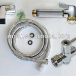 Brass toilet shattaf bidet spray with gold plated(A2001)-A2001
