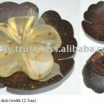 Coconut shell SOAP DISH HOLDER handmade-