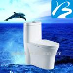 WC Toilet Hot Sale Sanitary Ware-BS10033-1
