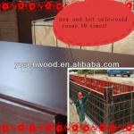 Film faced plywood for formwork concrete 18mm and 21mm-1220*2440mm,1250*2440mm